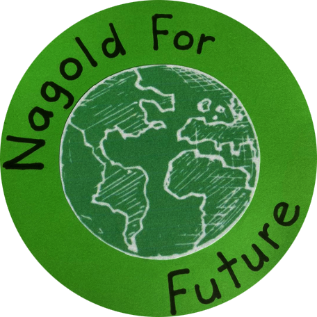 Nagold for Future – Offizielle Webseite Logo